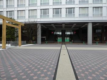 学院神社の鳥居.jpg